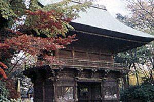 Debebchofu and Western Meguro Photo